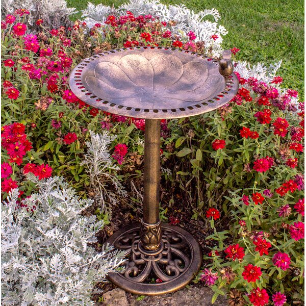 Resin Birdbath by Backyard Expressions