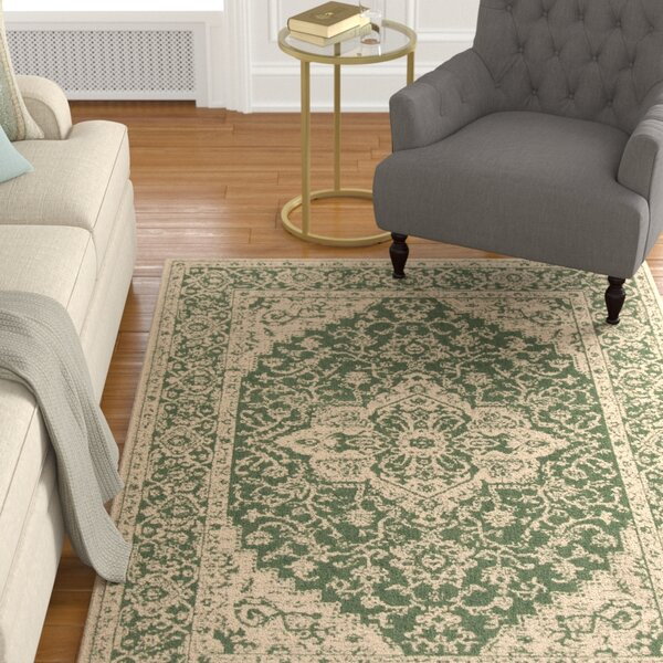 Allie Green/Creme Area Rug by Astoria Grand