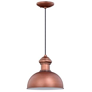 Price comparison Binne 1-Light Outdoor Pendant By Breakwater Bay