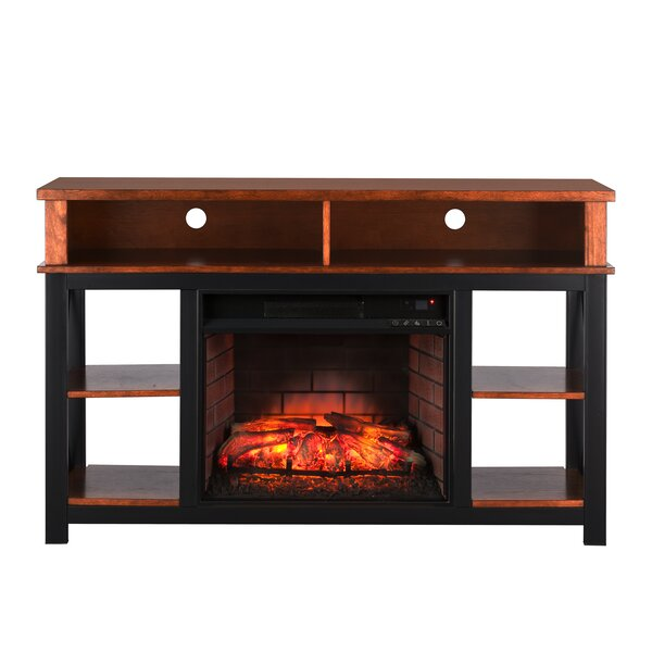Parkville Infrared 52 TV Stand with Fireplace by Loon Peak