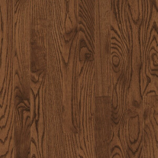 Dundee 3-1/4 Solid Red / White Oak Hardwood Flooring in Saddle by Bruce Flooring