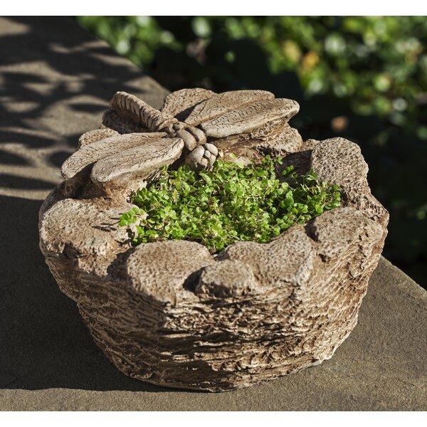 Dragonfly Cast Stone Pot Planter by Campania International