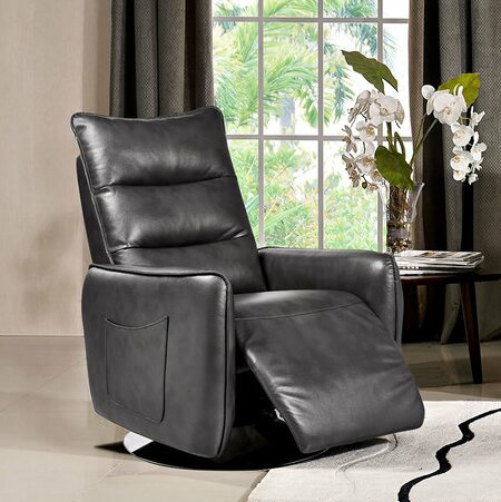 Zheng Manual Recliner by Diamond Sofa