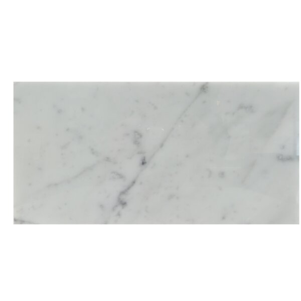 6 x 12 Natural Stone Field Tile in Carrara by Mulia Tile