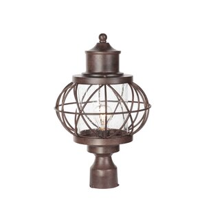 Shop for Catt 1-Light Lantern Head By Gracie Oaks