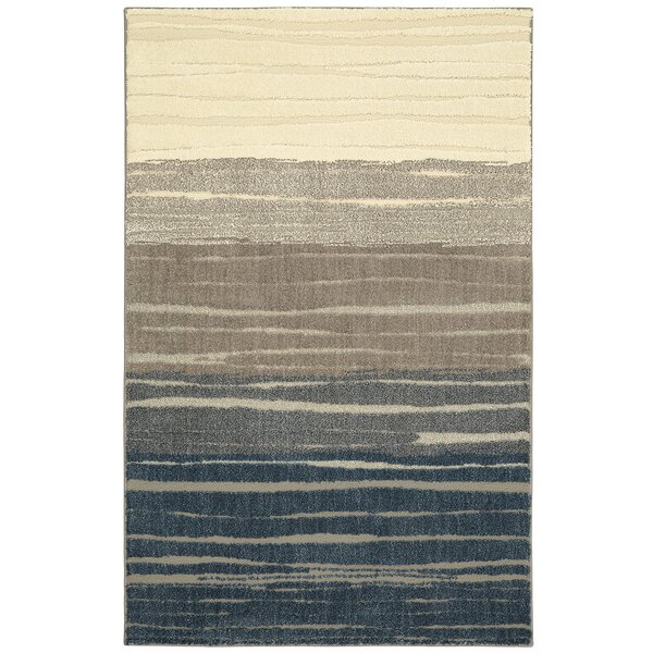 Pagosa Blue/Gray Area Rug by Mohawk Home