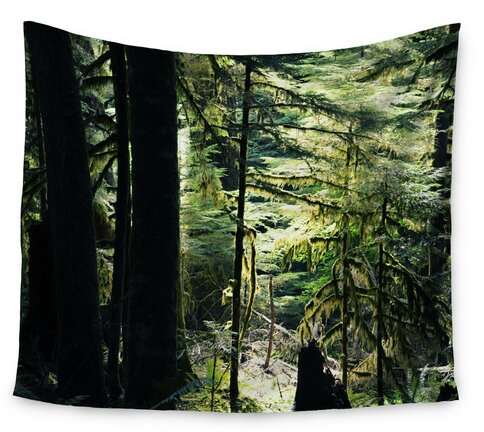 Enchanted Forest by Robin Dickinson Wall Tapestry by East Urban Home