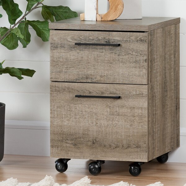 Munich 2 Drawer Mobile Vertical Filing Cabinet by South ShoreMunich 2 Drawer Mobile Vertical Filing Cabinet by South Shore