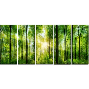 Forest with Rays of Sun Panorama 5 Piece Wall Art on Wrapped Canvas Set by Design Art