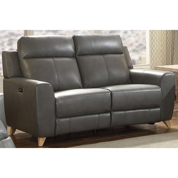 Offers Saving Guillermo Reclining Loveseat by Orren Ellis by Orren Ellis