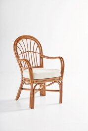 Strachan Dining Chair with Cushion by Bay Isle Home