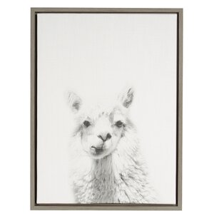 Alpaca Portrait' by Simon Te Framed Graphic Art on Wrapped Canvas by Kate and Laurel