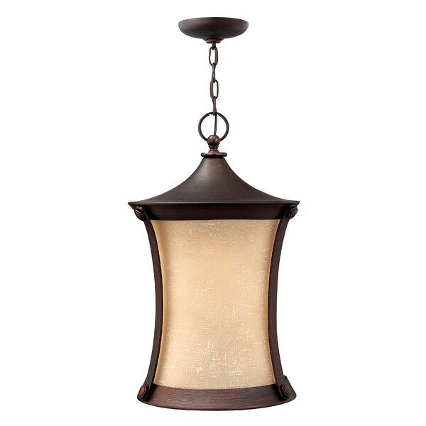 Thistledown 1-Light Outdoor Pendant by Hinkley Lighting