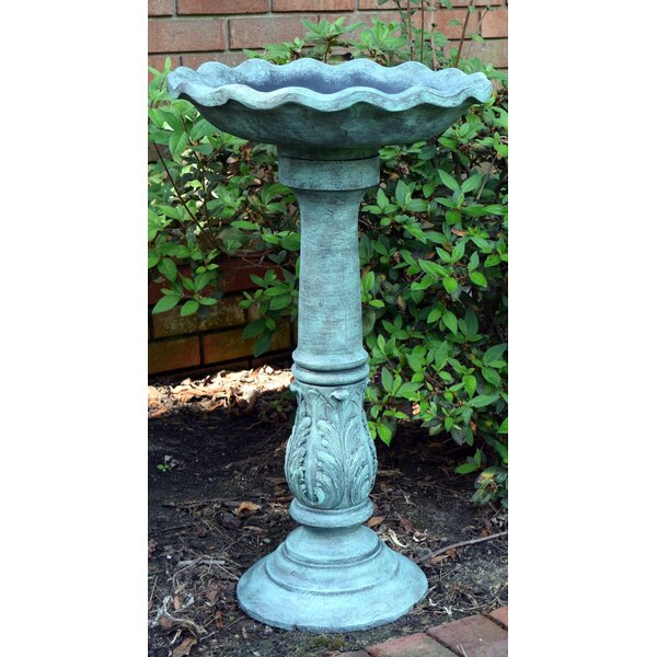 Outdoor Ruffled Birdbath by Hickory Manor House