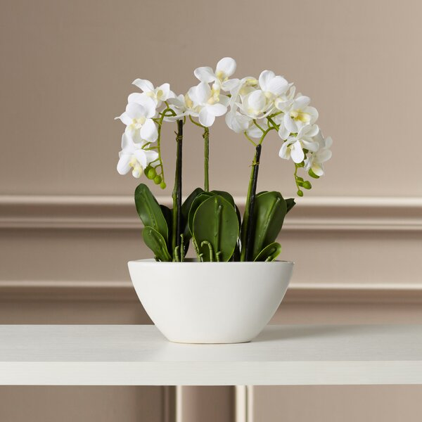 Phalaenopsis Silk Flowers in Pot by Willa Arlo Interiors