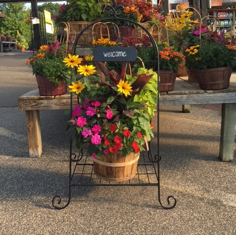 Welcome Folding Plant Stand by Artscapes| @ $72.95