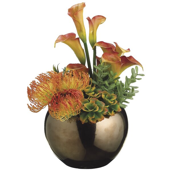 Agave Plant in Decorative vase by Bloomsbury Market