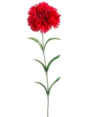 Carnation Spray Stem (Set of 2) by August Grove