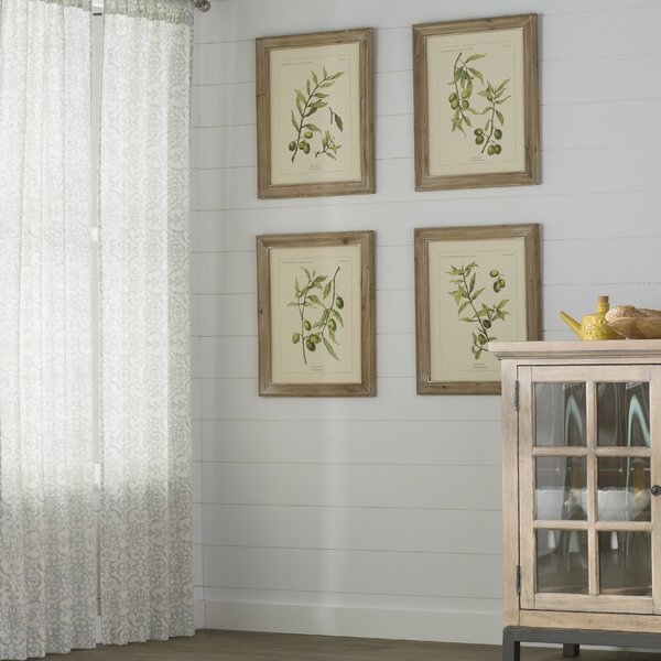 Olive Leaf Botanical 4 Piece Framed Graphic Artt Set by Laurel Foundry Modern Farmhouse