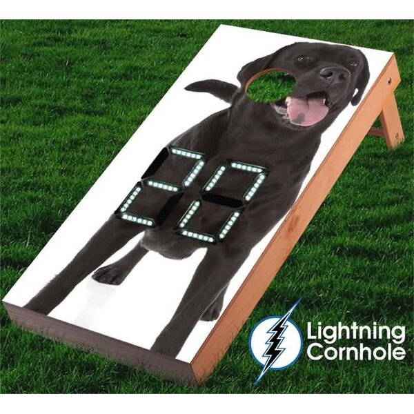 Electronic Scoring Black Lab Cornhole Board by Lightning Cornhole
