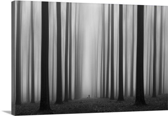 Labyrinth by Jochen Bongaerts Photographic Print on Canvas by Canvas On Demand