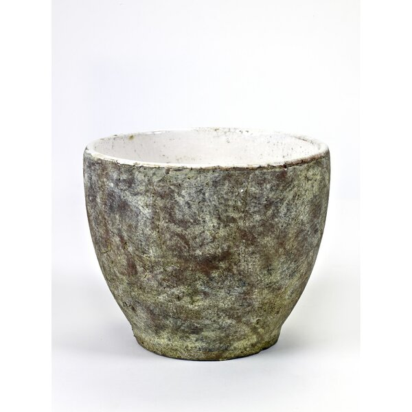 Espino Rounded Concrete Pot Planter by Bloomsbury Market