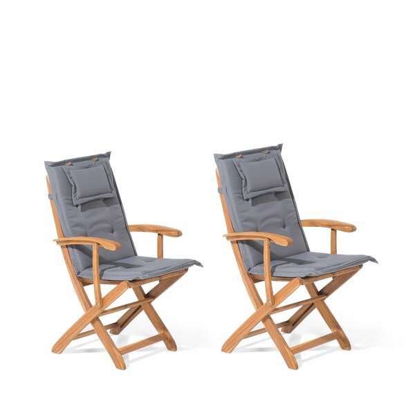 Glenbrook Folding Patio Dining Chair with Cushion (Set of 2) by August Grove