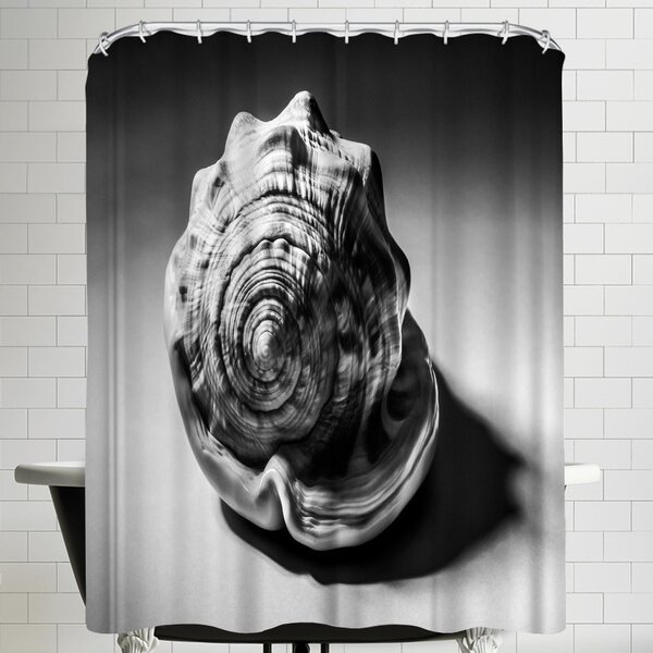 Annie Bailey Shell Number III Shower Curtain by East Urban Home