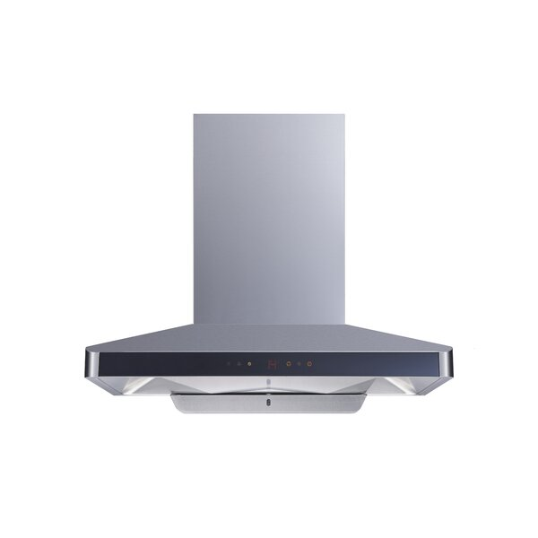 36 900 CFM Ducted Wall Mount Range Hood by Winflo