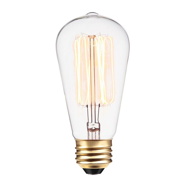60W Vintage Edison S60 Squirrel Cage Incandescent Filament Light Bulb (Set of 3) by Globe Electric Company