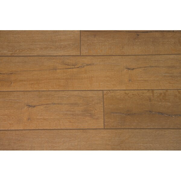 Turin 7.5 x 48 x 12mm Oak Laminate Flooring in Peanut by Branton Flooring Collection
