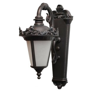 Shop For Petrey 1-Light Outdoor Wall Lantern By Alcott Hill
