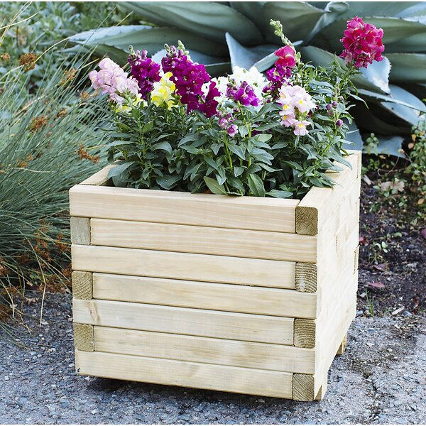 Horizonta European Spruce Planter Box by European Garden Living