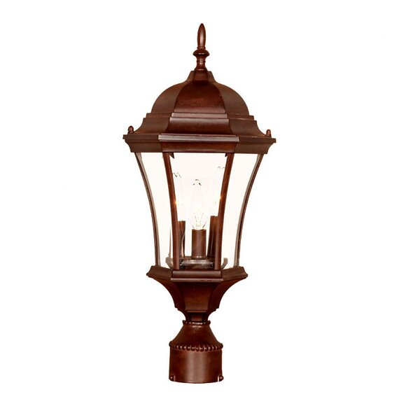 Francesca Lane Outdoor 3-Light Lantern Head by Alcott Hill