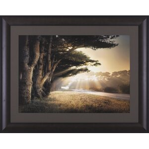 No Place To Fall by William Vanscoy Framed Photographic Print by Art Effects