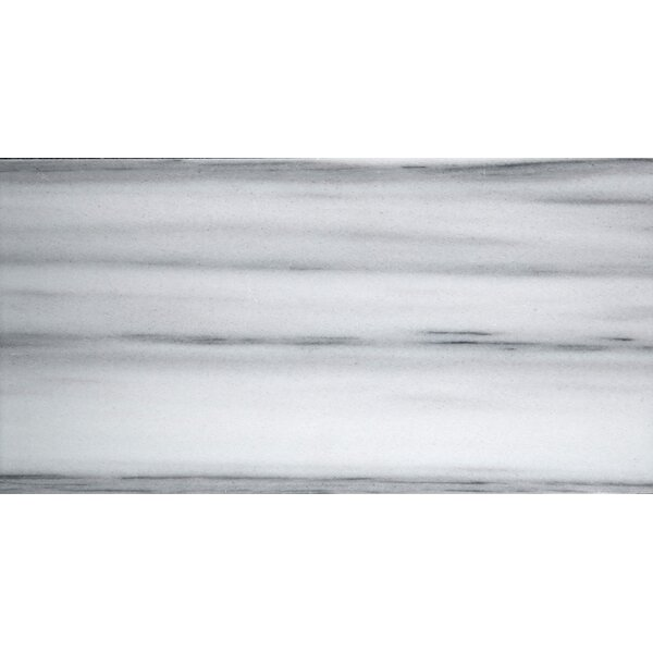 Metro 3 x 6 Marble Subway Tile in Vein Cut Honed White by Emser Tile