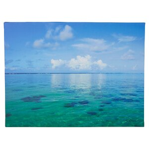 'Lagoon & Reef' by George Zucconi Photographic Print on Wrapped Canvas by Beachcrest Home