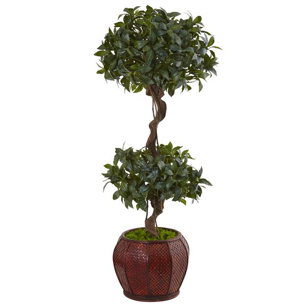 Artificial Sweet Bay Double Floor Boxwood Topiary in Planter by Darby Home Co