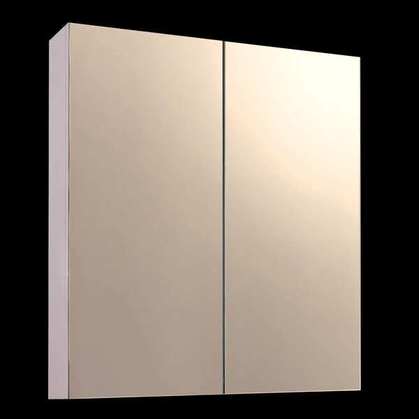 Yusuf 24 x 42 Surface Mount Frameless Medicine Cabinet by Orren Ellis