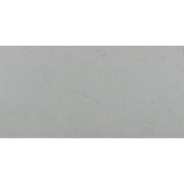 Glacier 24 x 48 Porcelain Field Tile in Gray by MSI
