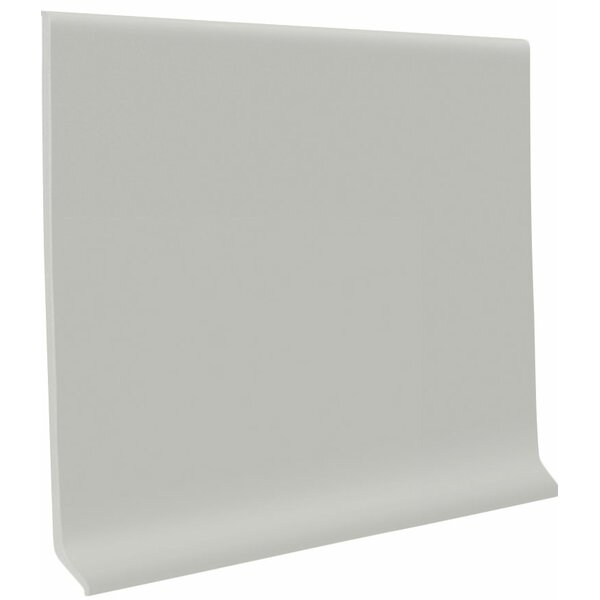 0.13 x 48 x 4 Cove Molding in Light Gray (Set of 30) by ROPPE