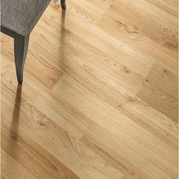 Sandscapes 8 x 54 x 6mm Laminate Flooring in Willow by Shaw Floors