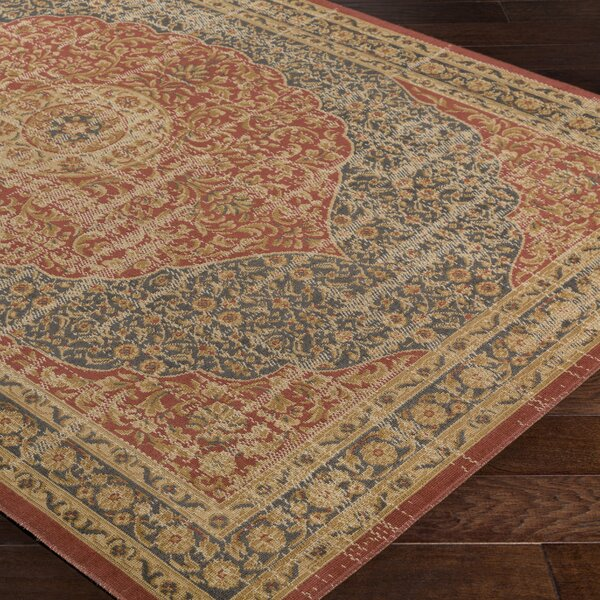 Cerys Traditional Brown Area Rug by Bloomsbury Market