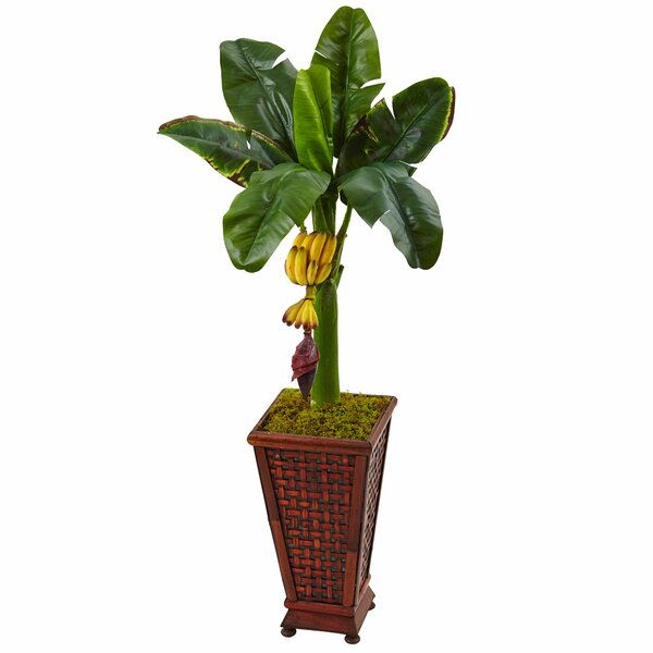 Artificial Banana Leaf Tree in Planter by Bayou Breeze