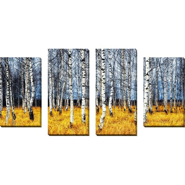 Birch Trees 2 4 Piece Photographic Print on Wrapped Canvas Set by Picture Perfect International