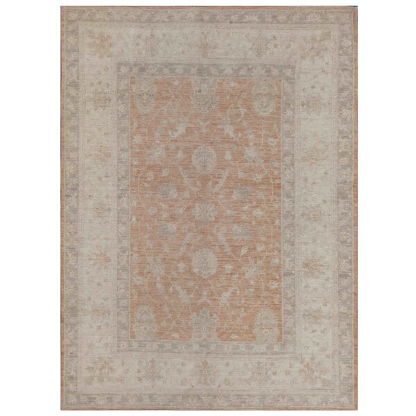 Vegetable Dye Hand-Knotted Rust/Ivory Area Rug by Herat Oriental