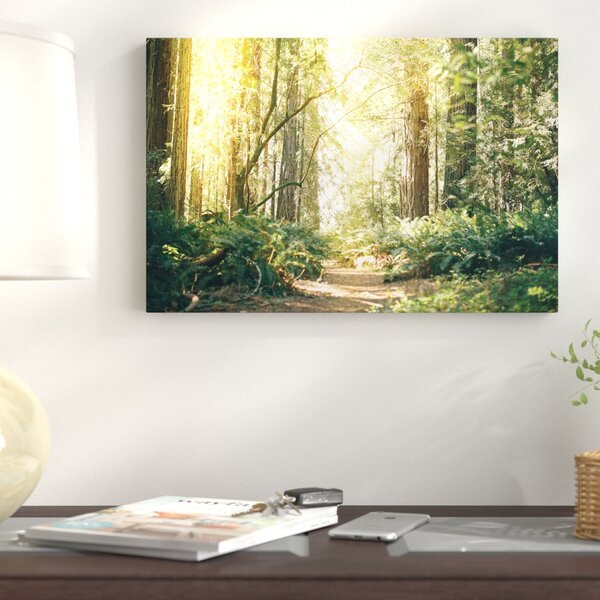 California Redwoods Path  Photographic Print on Wrapped Canvas by East Urban Home