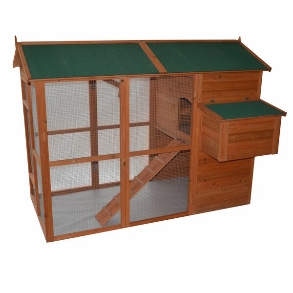 Auggie Deluxe Large Backyard Chicken Coop with Outdoor Run by Archie & Oscar