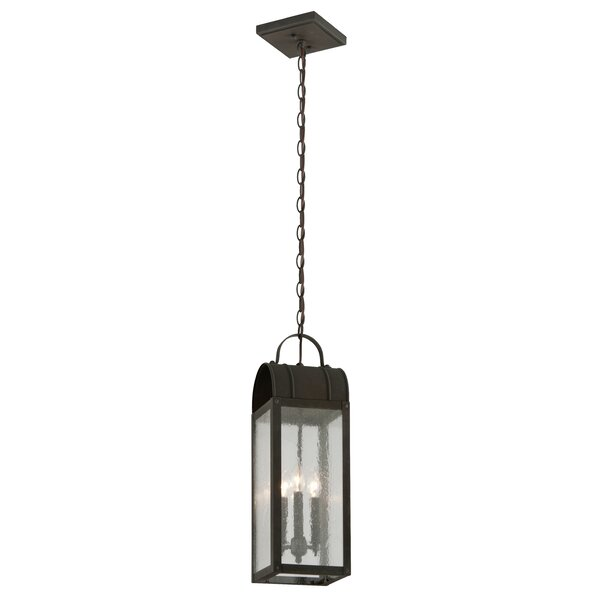 Bridlington 3-Light Outdoor Pendant by Canora Grey