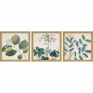 'Garden III' 3 Piece Framed Graphic Art Print Set by Bayou Breeze